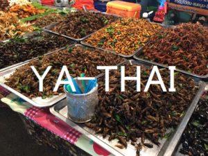 タイ 昆虫食