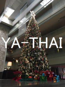 MDダイエット クリスマスツリー